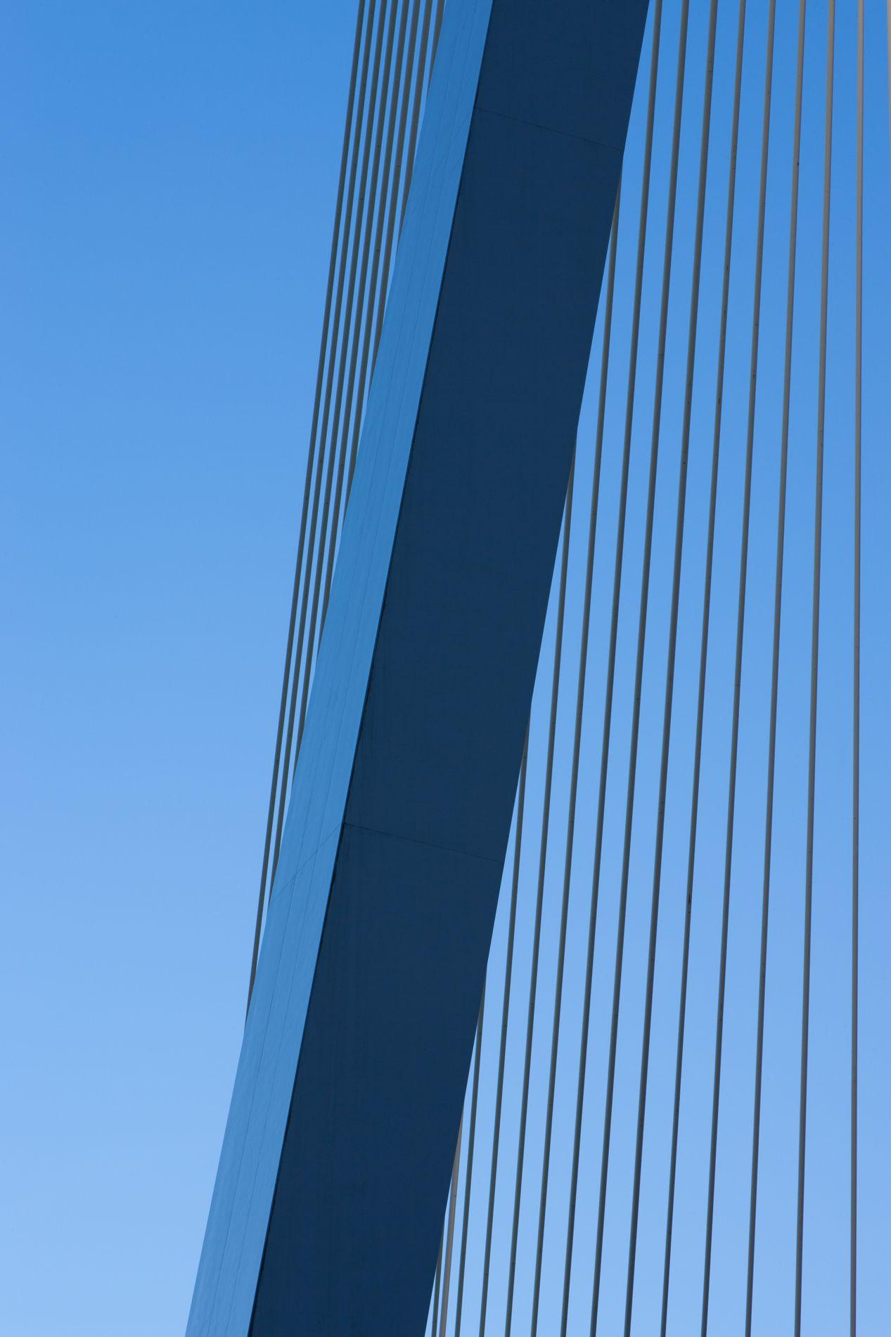 erasmusbrug, erasmus bridge