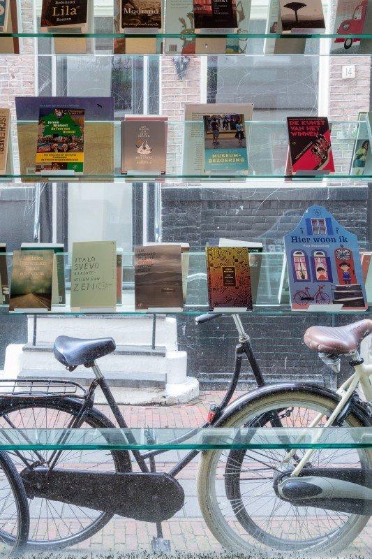 Querido Kinder- en Jeugdboeken - De Gans en Zijn Broer